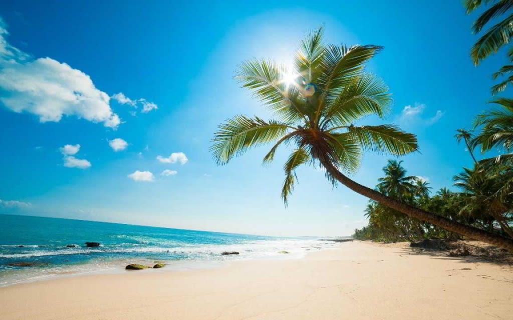 Vol A/R direct pour l'île Maurice pas chers à partir de 277€. Vite !